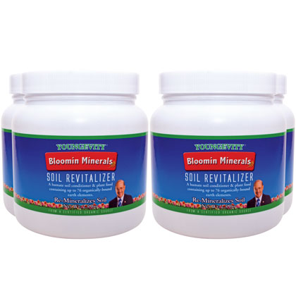 Bloomin minerals soil revitalizer 2 5 lbs 4 pack for What are soil minerals