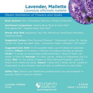 Lavender Maillette Essential Oil 10ml